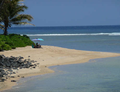 Why Would Anyone Visit Molokai?